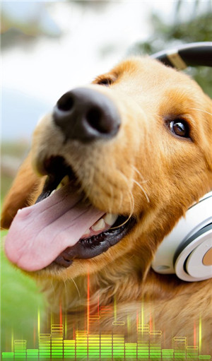 Ringtone Apps for Android-Animal Sounds Ringtones Free