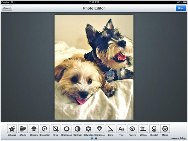 Convert Video to GIF - Aviary Photo Editor