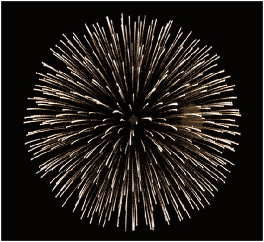 Create Fireworks GIF - Firework GIF