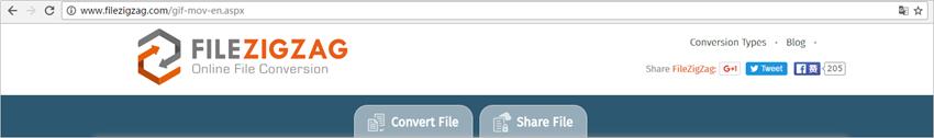 Convert GIF to MOV - FileZigZag.com