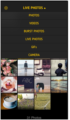 Best GIF Creation Apps for iPhone - ImgPlay