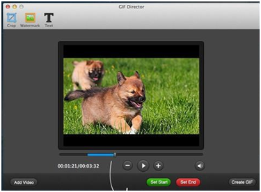 Top 5 Online Programs to Convert YouTube to GIF - GIF Director