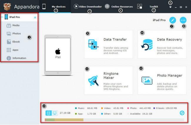 PDFs mittels Appandora vom iPad auf den PC übertragen - Das iPad verbinden