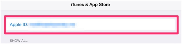 iPhone Cannot Connect to iTunes Store - Log Out App Store