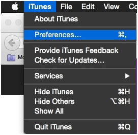 iPhone Cannot Connect to iTunes Store - Open Preferences in iTunes