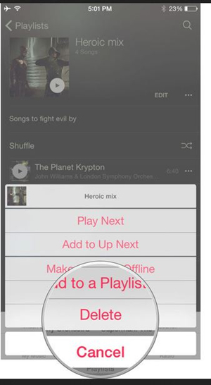 Delete Playlist from iPhone - Tap Delete Option