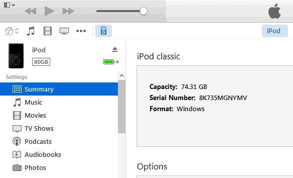 Set The iPod As A Hard Disk Manually- step 3: click Summary