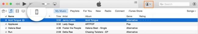 Wie man Videos auf den iPod Nano überträgt - iTunes starten und Zusammenfassung finden