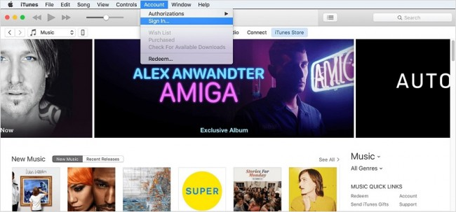 Stream music to ipod from PC-launch itunes and sign in