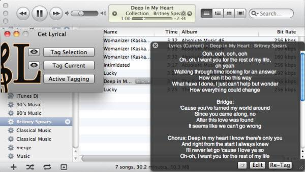 itunes lyric widget-itunes lyric plugin get