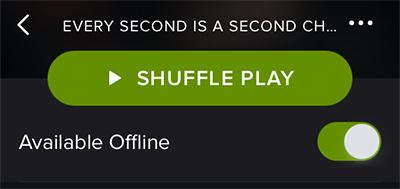 How to Listen Spotify on iPhone Online/Offline