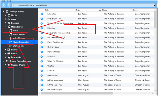 Export iTunes Playlists to iPhone/iPad/iPod
