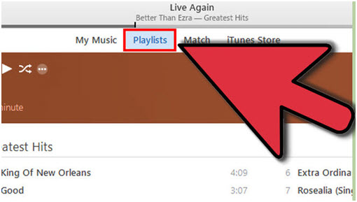 Export iTunes Playlist with Music Files via iTunes