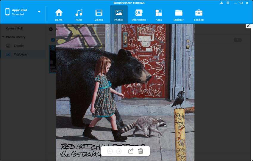 iPad Organize Photos - Preview Photos